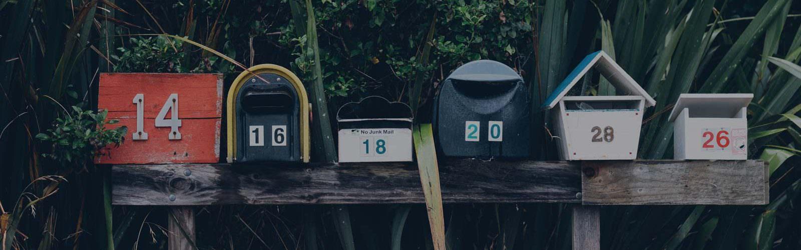 Burgoynes Mailchimp Email